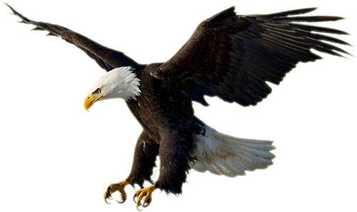Free America Patriotic Gifs - American Patriotic Clipart