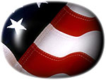 oval American flag button