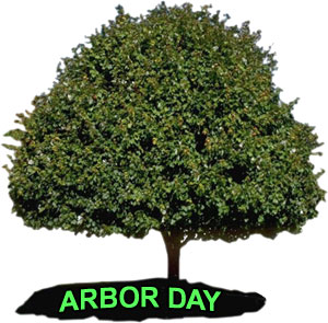 large tree with words Arbor Day