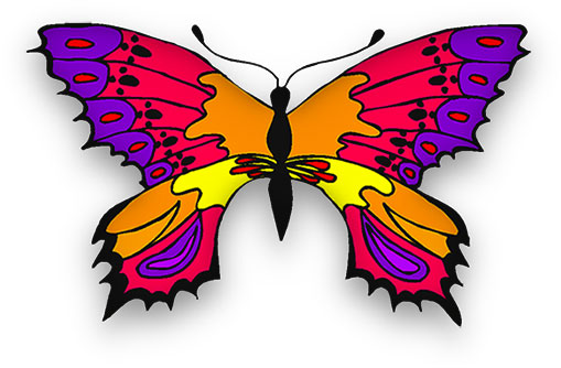 butterfly in many bright colors