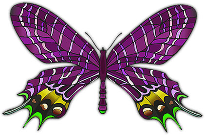green yellow and purple butterfly