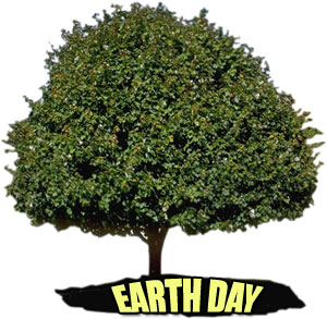 large tree with Earth Day