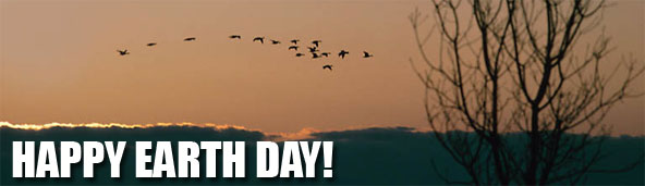 Happy Earth Day with birds flying