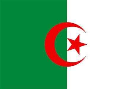 large Algerian flag