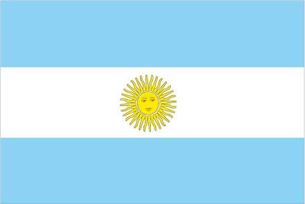 large argentina flag