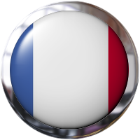 French flag button with metal trim