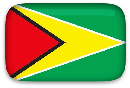 Guyana Flag clipart