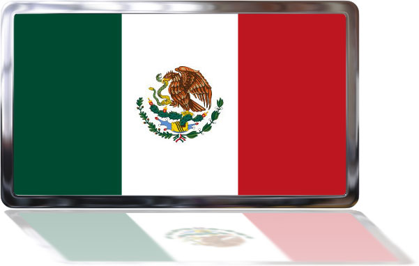 Mexican Flag with reflection