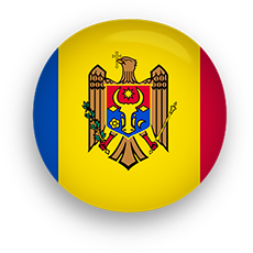 Moldova Flag button round