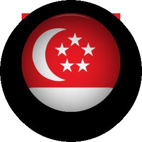 Singapore Flag round button