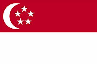 large Singaporean flag
