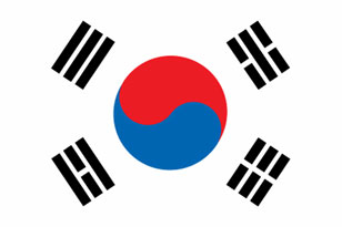 large South Korean Flag