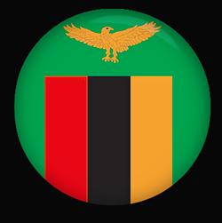 Zambian Flag button round