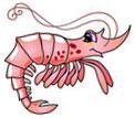smiling happy shrimp